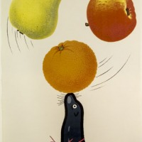 KF-affisch: (delfin jonglerar frukter)
